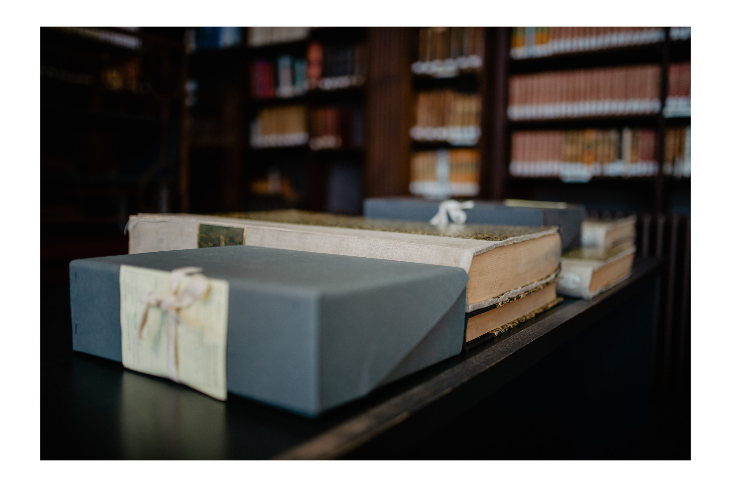 bibliothèque stanislas